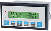RTPTwo Separate Ratemeters, Totalizers with Two Line LCD Display